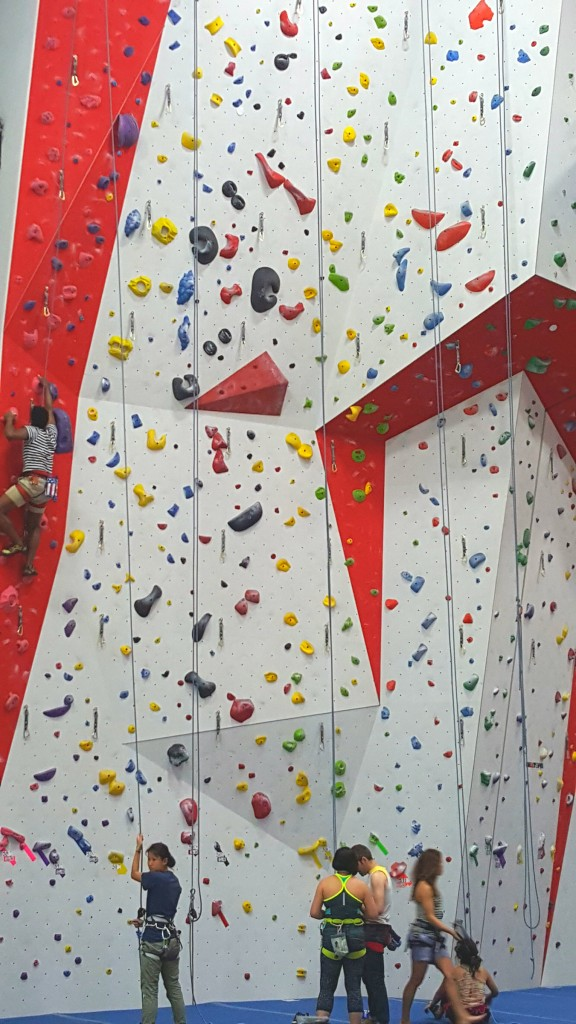 big wall the cliffs LIC climbing gym