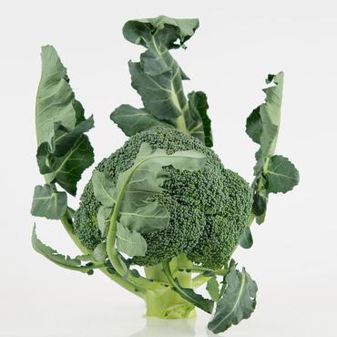 broccoli leaves food trend