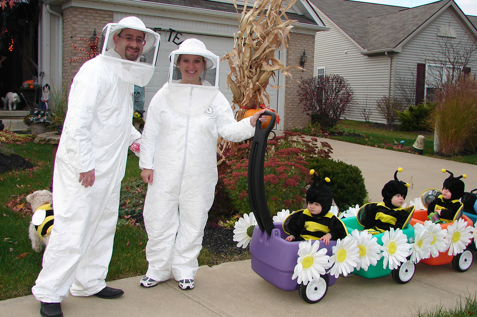 maternity halloween costumes bumble bee