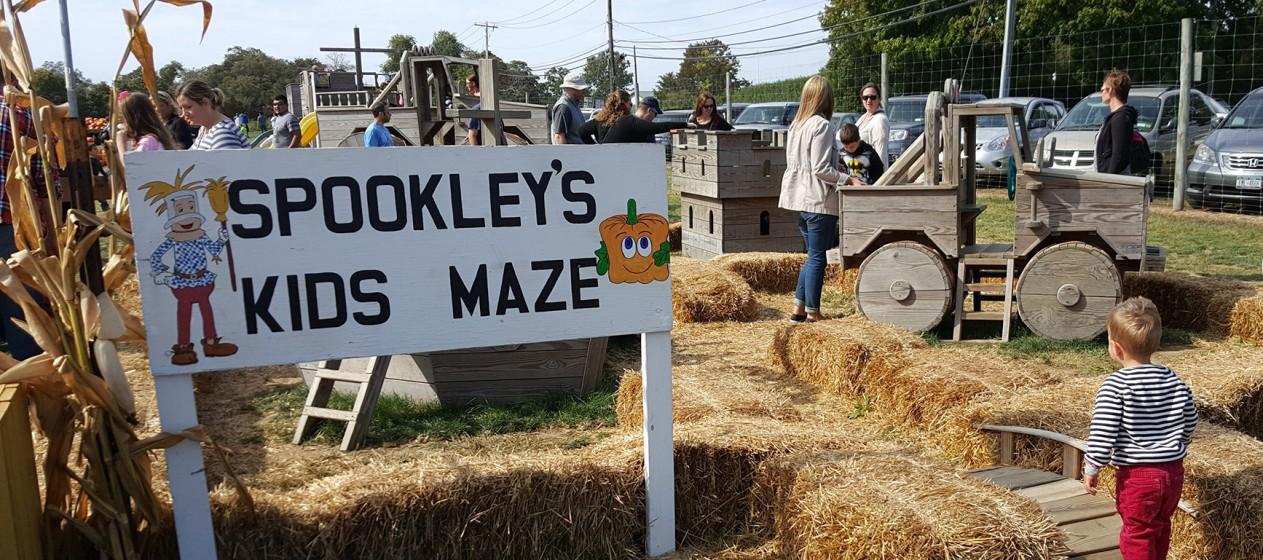 hay-maze